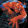 Spiderman memorie