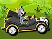 Tom e Jerry Green Valley